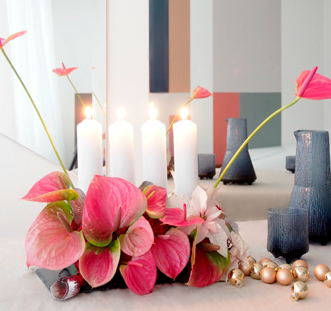 DIY til advent: Blomstrende og nem adventsdekoration - Plantorama